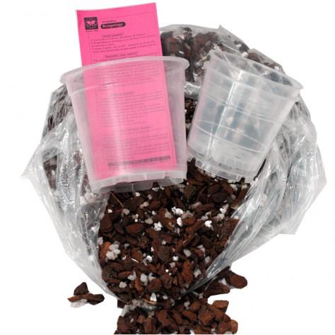 Mélange de rempotage (1 sac + 3 pots transparents)