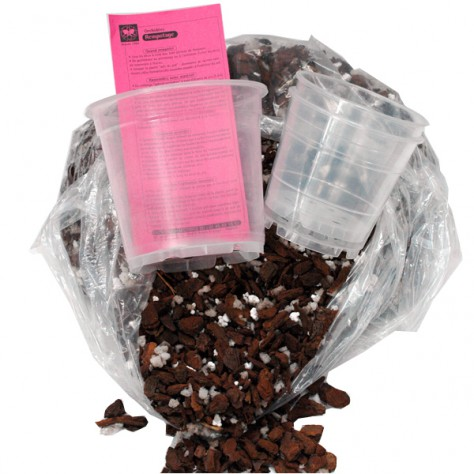 Mélange de rempotage (2 sacs + 6 pots translucides)