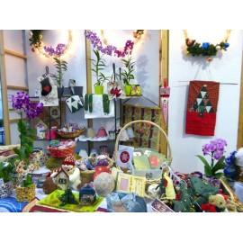 Vente caritative Fête des Mères Orchidées Vacherot & Lecoufle