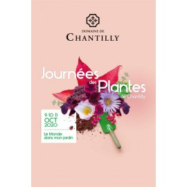 Orchidées Vacherot & Lecoufle - stand aux Journées des Plantes de Chantilly