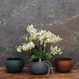 """Cache-pot orchidée """"Bolivie"""" métal effet brossé ø15 cm"""