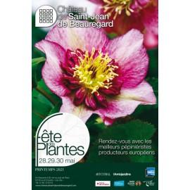 Fete des plantes de printemps St Jean de Beauregard