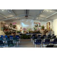 2021-09-11 - 10h30 Le rempotage des orchidées