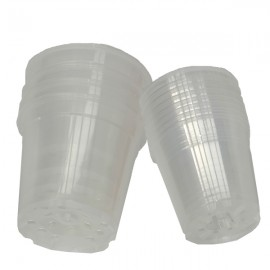 12 pots en plastique transparent diam. 12cm