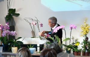 Atelier culture orchidées de Philippe Lecoufle